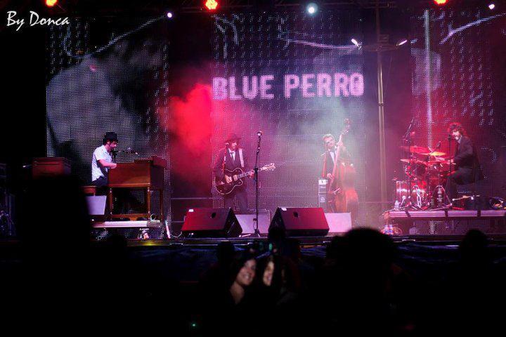 BLUE_PERRO_2